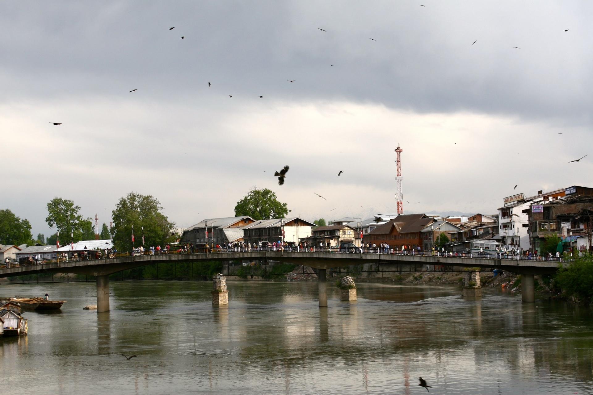 Kashmir Stringer